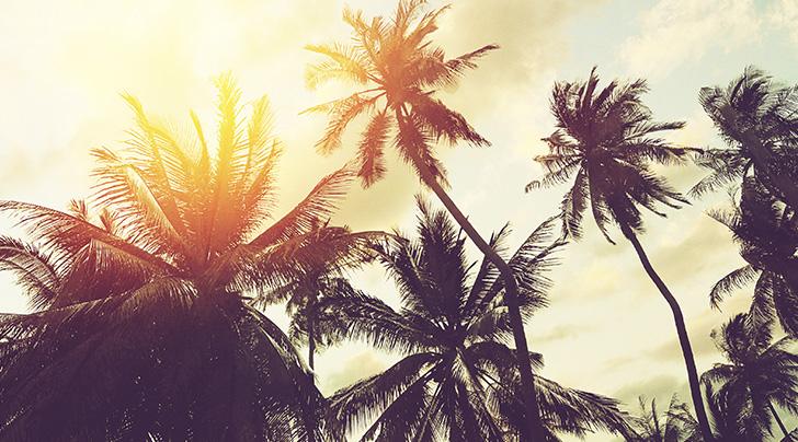 amanecer playa del carmen