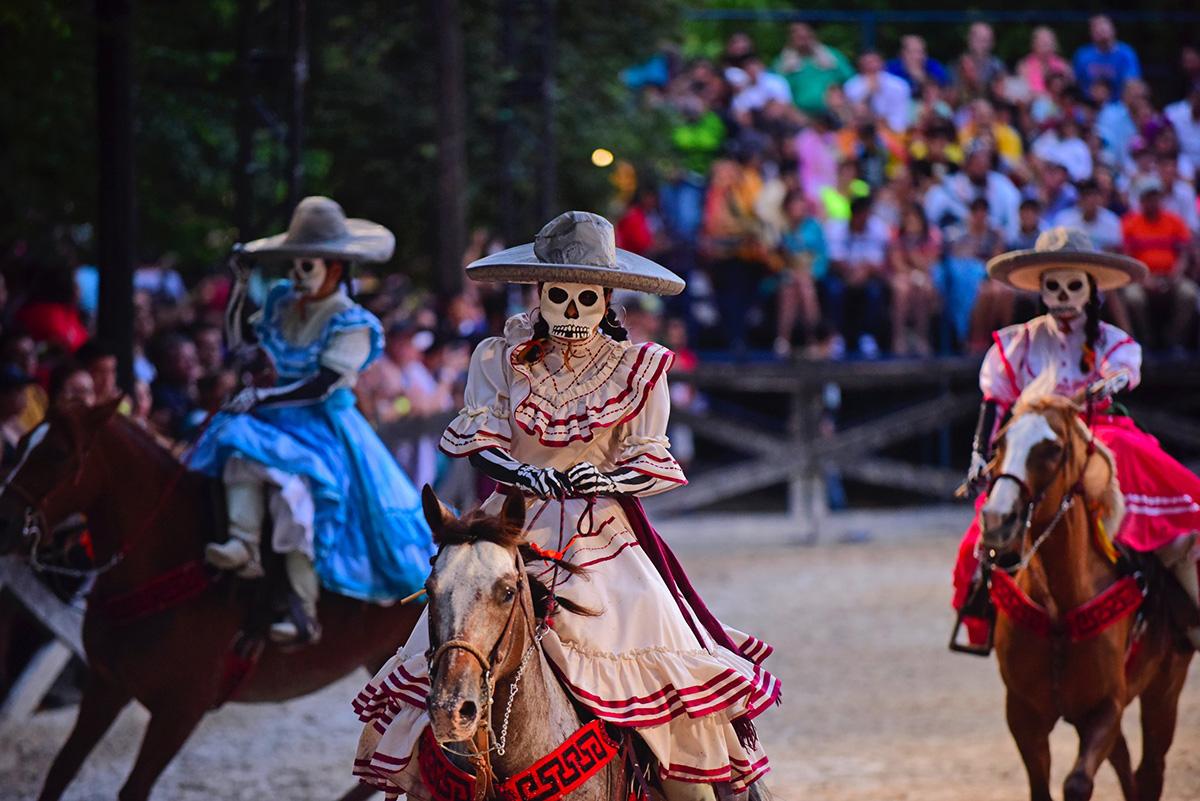 Festival dia y muerte 1